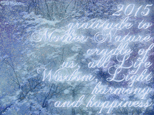 2015 gratitude to Mother Nature ~ cradle of us, all Life, Wisdom, Light, harmony and happiness