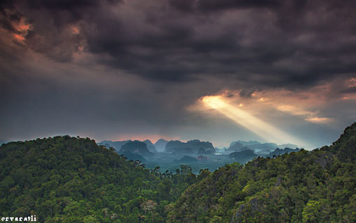 Amazonian landscape, with a shaft of light