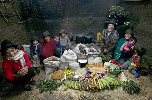 Ecuador: The Ayme family of Tingo; food expenditure for one week: $31.55; family recipe: potato soup with cabbage