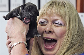Bernann McKinney holds one of five cloned pitbull puppies