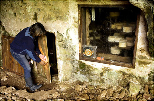 Raquel Viejo in her cheese cave, where she stores Cabrales, a blue cow's cheese named after the town in Asturias where it was first made