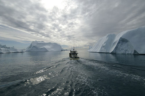 Sermeq Kujalleq glacier surrenders around 20 billion tons of icebergs into the ocean every year