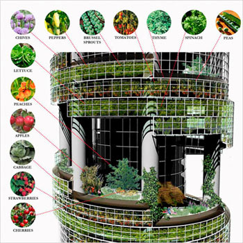 Dickson Despommier, a professor at Columbia University, created the vertical farm concept with 82 graduate students. He says that the skyscrapers could protect a city's food supply from floods and droughts, and from pathogens that attack crops