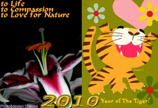 2010 Lunar Year of the Tiger: salute to Life, to Compassion, to Love for Nature