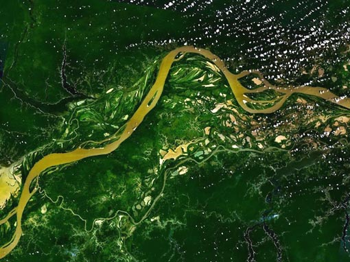 Amazon river flowing through the Amazon rainforest