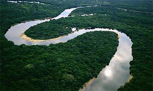 rainforest in Mato Grosso, Brazil
