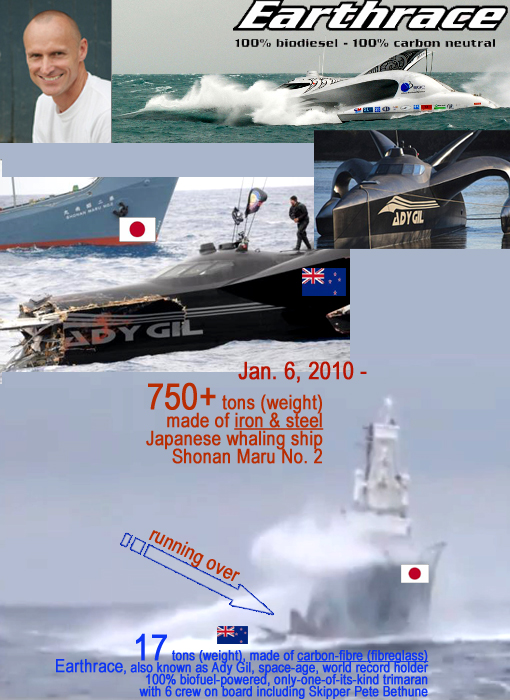 Top L: Pete Bethune, skipper of Earthrace, the world record holder for circumnavigation. Middle: Earthrace, renamed Ady Gil, on new mission to defend ocean life but sunk by Japanese whaler. Bottom: Japanese 750+ tons iron&steel whaling ship running over 17 tons carbon-fibre (fibreglass) Ady Gil (Earthrace), space-age, only-one-of-its-kind trimaran with 6 crew on board including Captain Pete Bethune