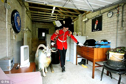 leaving home: Lance Cpl Ryan Arthur leads Billy through their digs in Chester