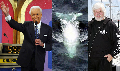 The Price Is Right: Bob Barker donates 5 million dollars to Sea Shepherd Conservation Society to help stop Japanese whale slaughter