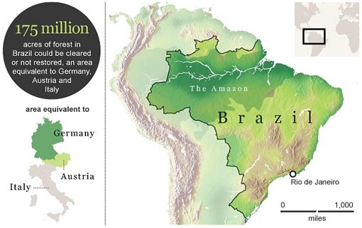 175 acres of forest in Brazil could be cleared but not restored, an area equivalent to Germany, Austria and Italy