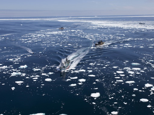 Sea Shepherd pursuing whaling fleet through thin ice