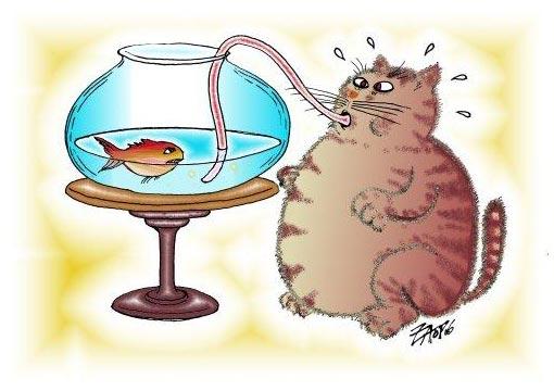 cartoon: fish and fat cat
