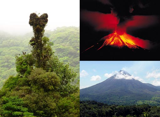 Left: 'Vines had grown up and over a dead tree to form a heart shape.  I realized then that this heart is a symbol of Costa Rica.  Costa Ricans have put so much effort into saving their rainforest and their land.  Preservation is one of the main focuses for the Costa Rican people.  The rainforest really is where their heart is.'; Right: Arenal volcano spits lava on a regular basis.