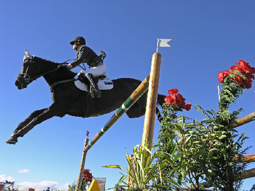 World Equestrian Games held for the first time ever in the United States