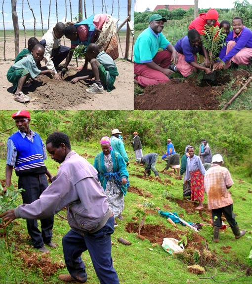 Top left: pupils of Olkimitare School planting trees at the school yard, one of Kicheche's projects; top right: working to encourage a 'tree-planting culture' among Kenya's Christians, one of the most practical ways to bring healing to degraded landscapes & renewed hope to people who depend on wood as a key resource; bottom: members of GBM plant trees on an eroding hillside