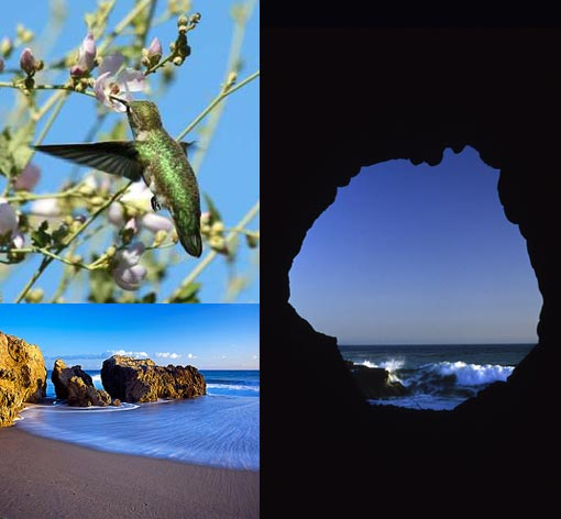 Leo Carrillo State Park, Malibu, California is the closest Pacific Ocean beach to Thousand Oaks, California. Its biggest claim to fame is as a popular location for photographers and movies, including The Karate Kid, Grease, The Craft, and Point Break
