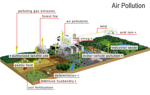 air pollution: the presence in the atmosphere of large quantities of particles or gases produced by human activity; these are harmful to both animal and plant life