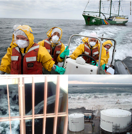 Greenpeace: Japan nuclear plant radiation accumulating in marine life