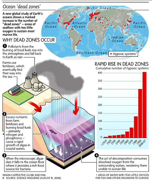 ocean deadzones concentrated mainly around coasts of industrialized countries, causing widespread killing of fish & other marine organisms