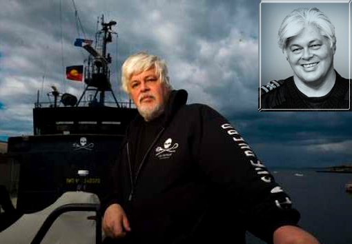Animal Planet 'Whale Wars' star Captain Paul Watson emailed exciting news that his Sea Shepherd crew have beat back the Japanese whaling fleet.