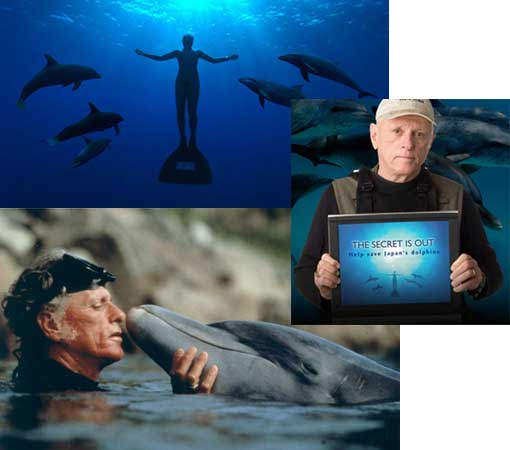 Ric O'Barry, Campaign Director for Earth Island Institute's Dolphin Project and star of the hit documentary The Cove, will receive the Bambi Award in Germany.