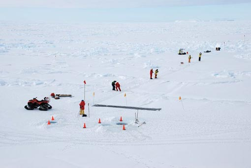 sea ice properties were examined in 200 m transects, both at the surface and from the air