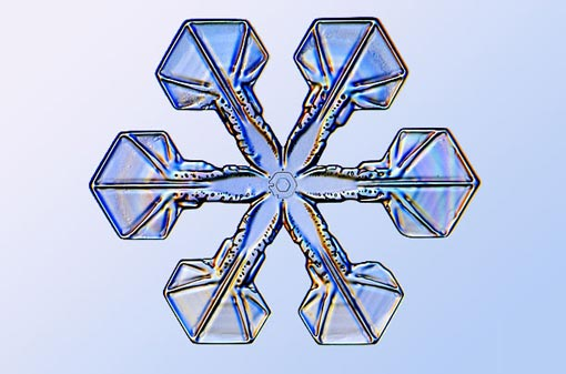science of snowflakes: sectored plates