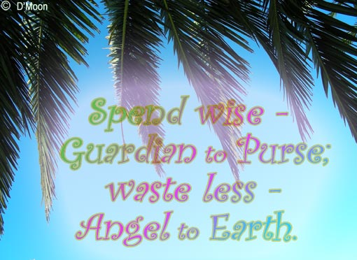 'Spend wise - Guardian to Purse; waste less - Angel to Earth.' - LuCxeed