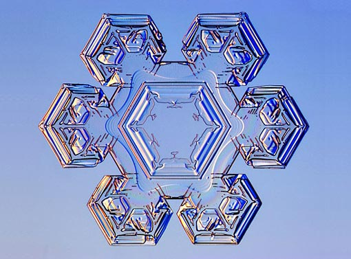 science of snowflakes: stellar plates