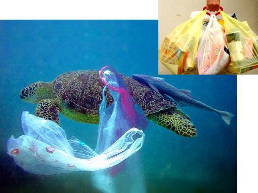 Plastic Bags - an Inconvenient Convenience