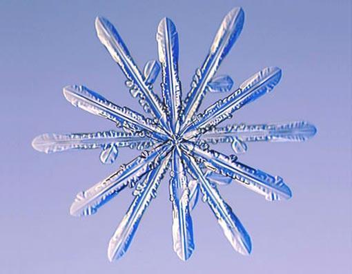 science of snowflakes: twelve-sided snowflakes