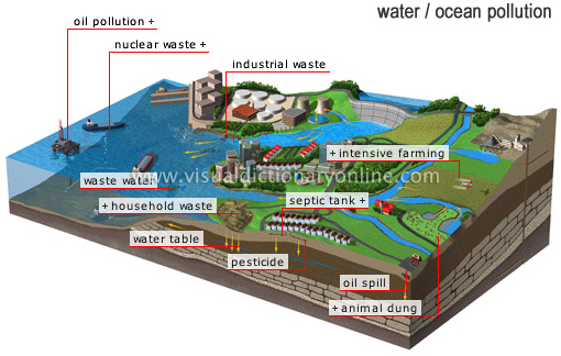 The cycle of the Earth's waters is continuous, carrying and spreading pollutants introduced by human activity all around the planet. Intensive farming, septic tank, pesticide, oil spill, animal dung, industrial waste, household waste, water table, waste water, nuclear waste, oil pollution...