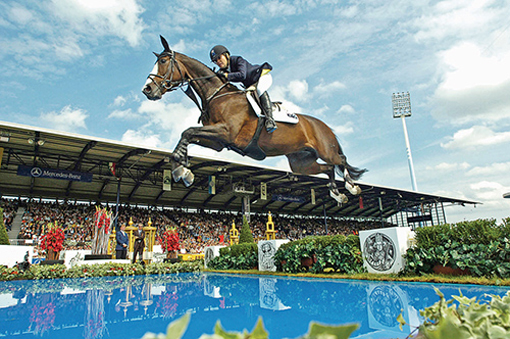 largest equine event in U.S. history, the Alltech FEI World Equestrian Games 2010