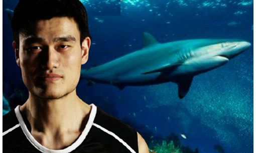 NBA star Yao Ming pledged to give up eating shark's fin soup. 'Endangered species are our friends.'