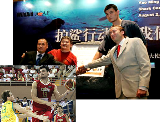 'When the buying stops, the killing can too.' The NBA star Yao Ming urged China to say no to shark fin soup, the Cantonese delicacy that includes endangered sharks or their fins among its ingredients.