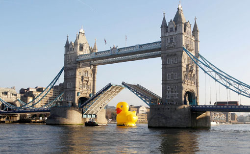 giant 50-foot rubber duck floats down the Thames /></p> <p><img src=