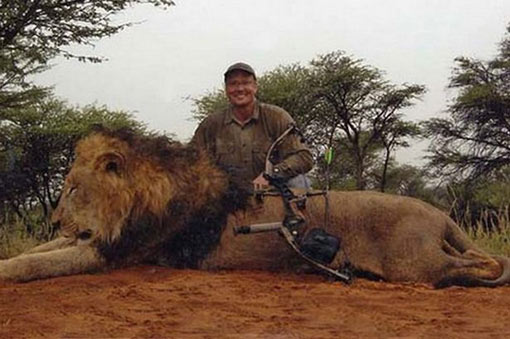 injury inflicted by hunter took 40 hours to kill the magnificent lion king