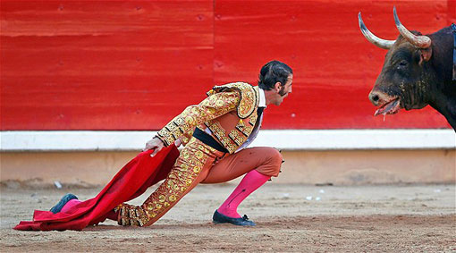bullfighter stares down bull in Spain