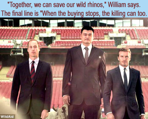 The Duke of Cambridge, David Beckham, and Yao Ming team up in new WildAid PSA