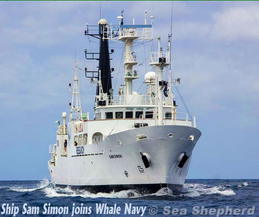 Sea Shepherd unveils the latest addition to its fleet to stop Japan slaughtering whales; the ship was paid for by Sam Simon, the co-creator of the TV show The Simpsons