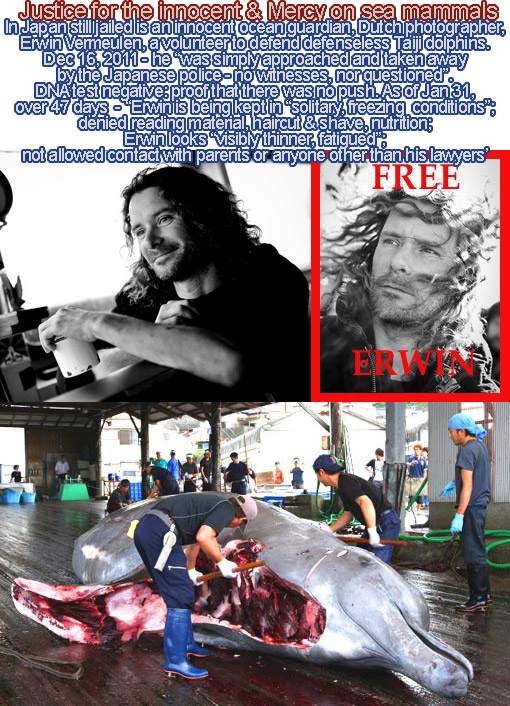 Taiji, Japan - Cove Guardian Erwin Vermeulen taken away by police, no witnesses, not questioned