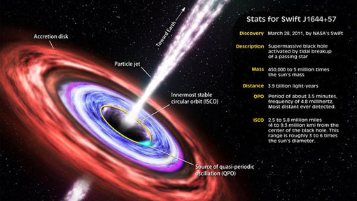 wandering star captured by a supermassive black hole emitted a