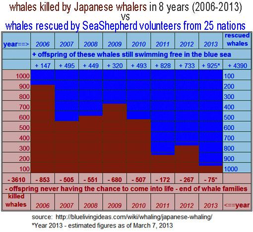 2006-2013: whales killed by Japanese whalers in 8 years vs. whales rescued by Sea Shepherd volunteers from 25 nations