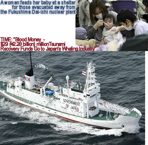 Top: woman feeds her baby at a shelter for those evacuated away from the Fukushima Dai-ichi nuclear plant. Bottom: Japanese vessel, on its sides reads in giant letters 'Government of Japan'