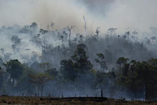 SOS Amazon: rainforest fires rage as Brazil bans burning for 60 days to reduce spreading damage