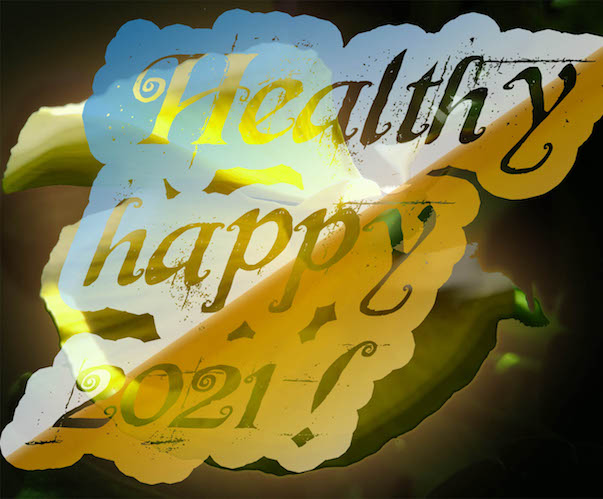 Happy New Year! Images: Angel Wings; Healthy happy 2021